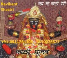 Love marriage specialist pandit ji  +91-9911764305